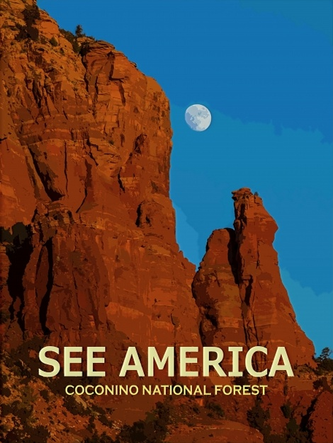 SEE AMERICA: COCONINO NATIONAL FOREST